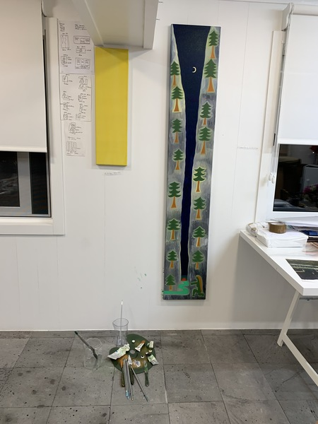 Studio in Pico Island 39