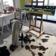 Studio in Pico Island 45