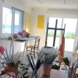 Studio in Pico Island 33